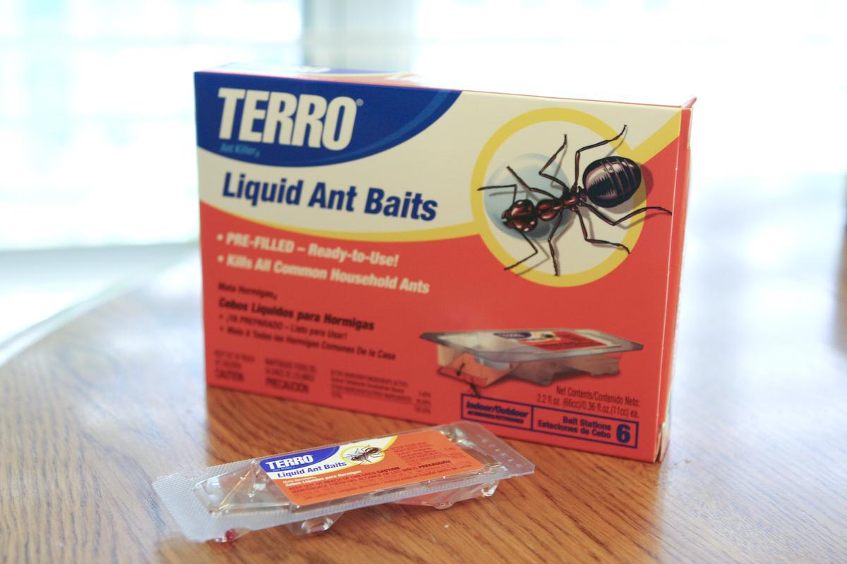 Ant Trap Go Pop Go